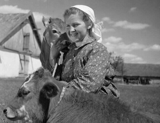 Девочка с коровой и теленком. Моя бабушка Галя, еще маленькая, во время войны помогала матери, которая была в колхозе телятницей.
