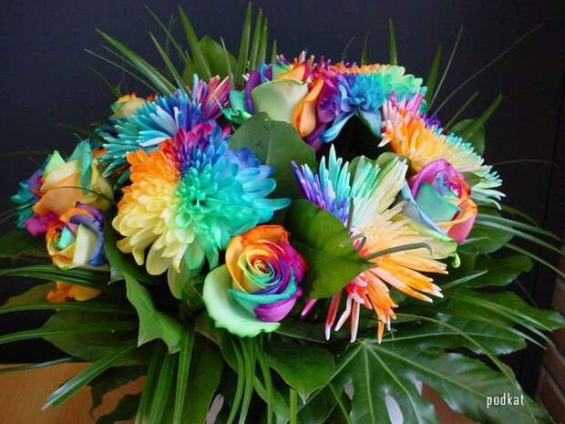 "Flowers Send Flowers Gift Flowers Wedding Flowers "" Blog Archive "" Amazing Happy Flowers Wallpapers"