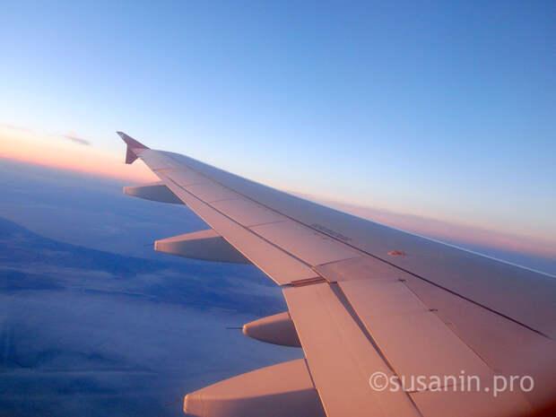 Пьяная жительница Удмуртии устроила дебош на борту самолета «Стамбул – Казань»