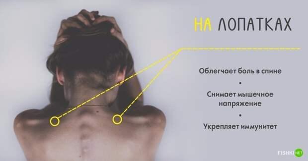 Массаж лучше делать регулярно, ведь организм - это слаженная система, которая работает, как часы долголетие, массаж, тело, точки на теле