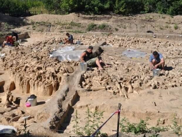 Древние обитатели России строили дома из костей мамонтов