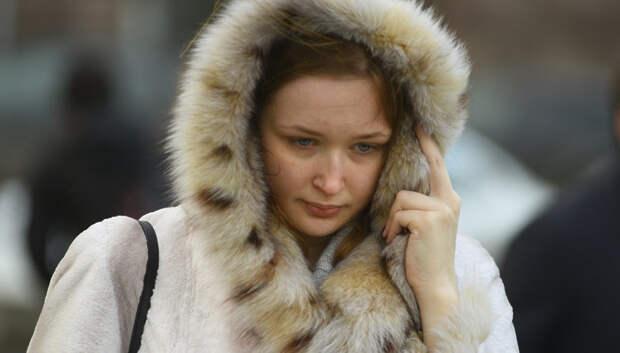 «Желтый» уровень опасности из‑за ветра объявили в Московском регионе на 20–21 февраля