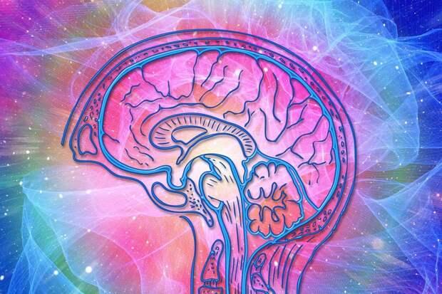 Обнаружена связь между COVID-19 и ускорением развития болезни Альцгеймера