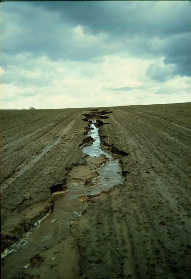 Плодородная почва утрачивается из-за выветривания и вымывания