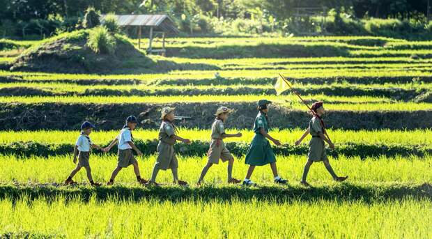 Детские лагеря откроются в Удмуртии 12 июля