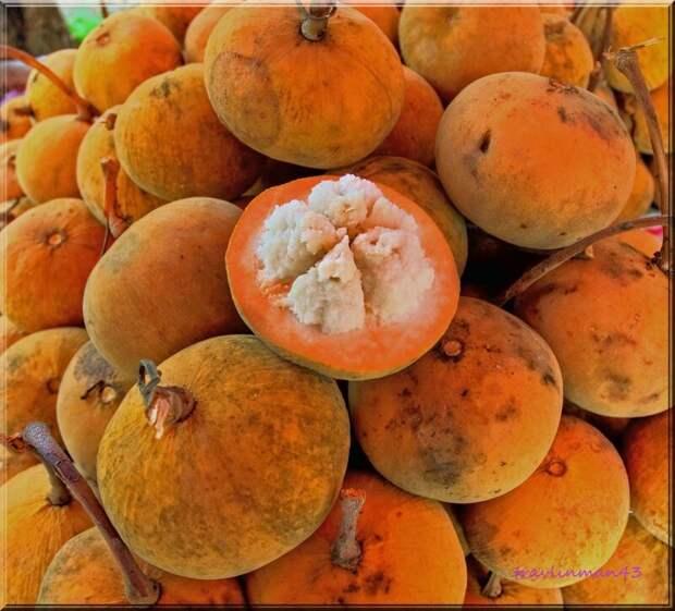 Сантол (лат. Sandoricum koetjape) — плодовое дерево, вид рода Sandoricum семейства Мелиевые, произрастающее в Юго-Восточной Азии. Само дерево и его плоды имеют различные названия в разных языках, например, гратон (กระท้อน) в Таиланде еда, интересное, неизвестные, плоды, природа, растения, съедобные, фрукты