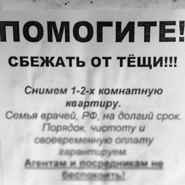 Смешные объявления, мимо которых невозможно пройти (18 фото)