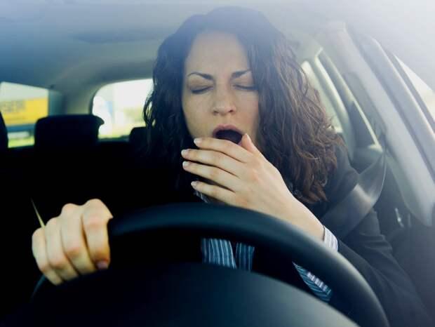 Ученые выяснили, почему водители засыпают за рулем