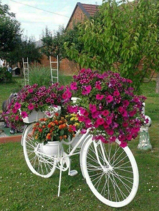 Декоративная цветочная клумба. | Фото: Pinterest.