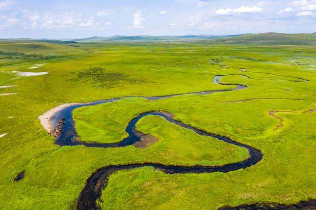 Даурия — край, где исчезают озера и живут дзерены