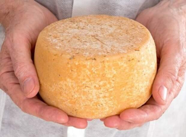 13 вкуснейших сыров, которые вы можете приготовить дома