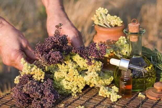 Для отпугивания тараканов часто применяют ароматические масла