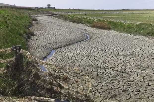 Фермеры Украины жалуются на засуху: Данилов уверен, что страна может остаться без воды