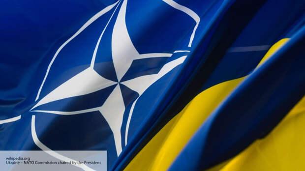 Как «цветок» в проруби: эксперты подвели итог заигрываний Украины с НАТО длиной в 24 года