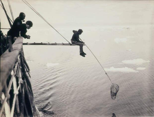 Первая Австралийская антарктическая экспедиция в фотографиях Фрэнка Хёрли 1911-1914 55