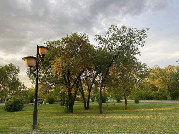 Администрация Читы потратит более 9 млн рублей на содержание «зеленых» территорий города