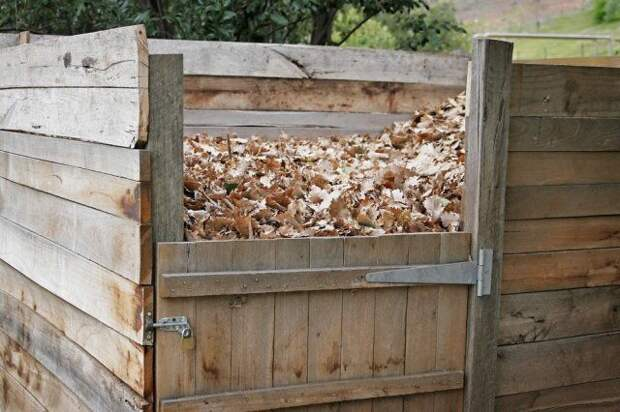 Листья в ящике для компоста