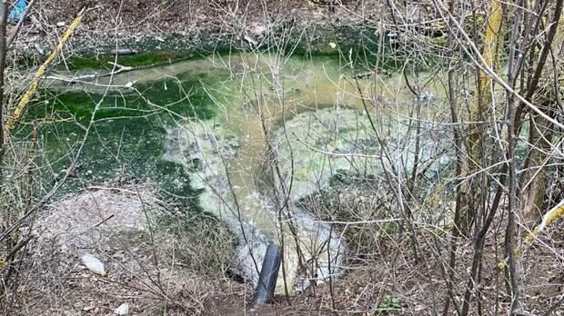 ВРостовской области обнаружен источник сброса нечистот вДон
