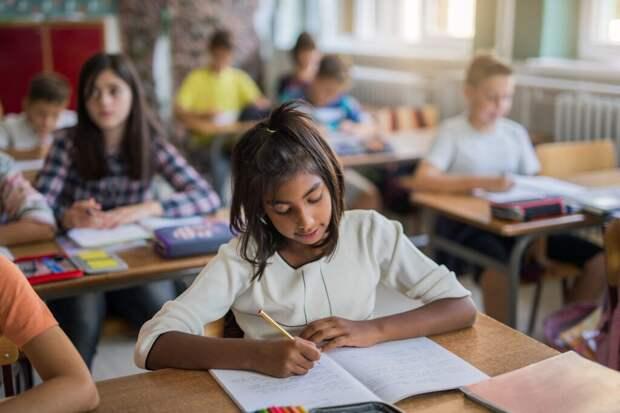 В России будет запущена программа для социальной адаптации детей цыган в школах