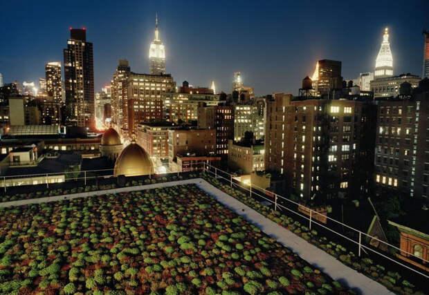 Сады накрышах