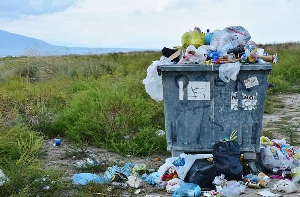 Больше 100 площадок для сбора мусора в Селтах оборудовали с нарушением закона