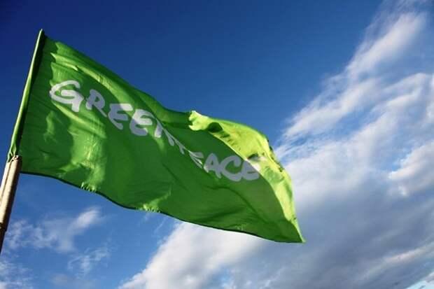 В Greenpeace ответили на предложение депутата Госдумы признать их нежелательной организацией