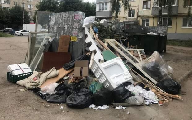 Рязанка пожаловалась на неубранный мусор на улице Дзержинского