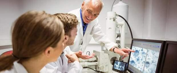 Стартап Ozette создал платформу, которая работает как МРТ для иммунной системы