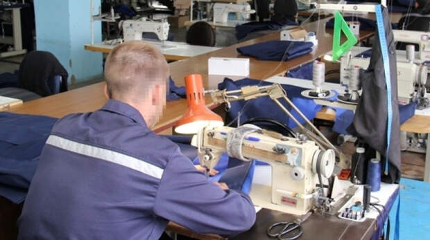 В России предложили заменить трудовых мигрантов заключенными