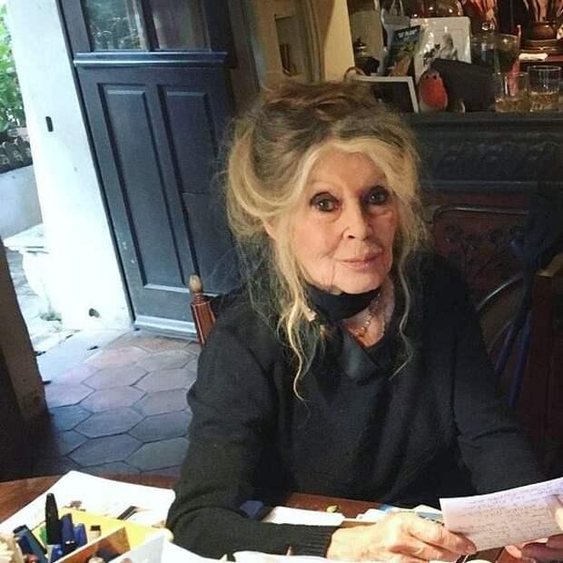 Как сегодня выглядит 60-летний сын Брижит Бардо, от которого она отказалась в свое время
