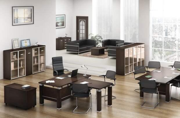 Кабинет директора: дизайн, фото и стили оформления (67 фото)