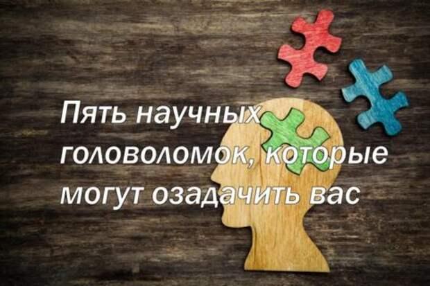 Пять научных головоломок, которые могут озадачить вас