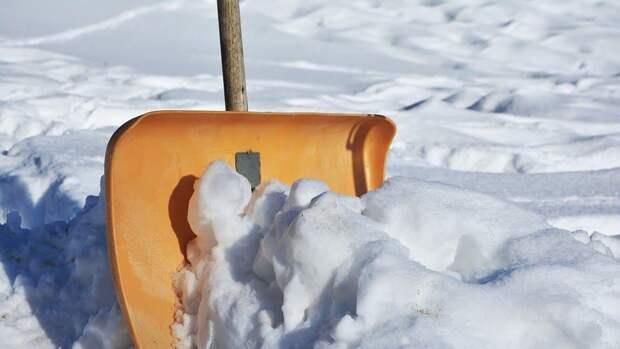 Из двора дома на Волочаевской улице вывезли снеговые кучи