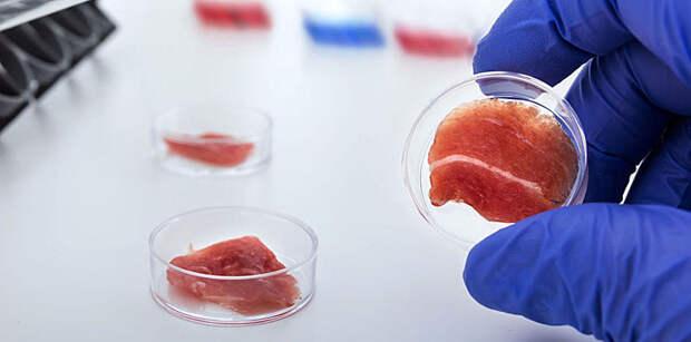 Первый в мире стейк из лаборатории