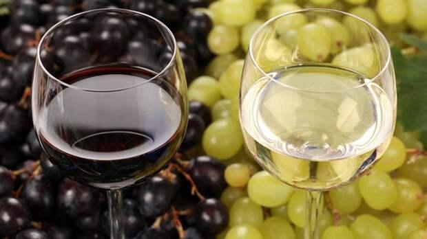 Перечислены продукты, с которыми нельзя пить вино