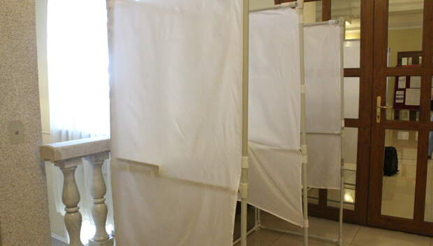 Ситуационный центр Общественной палаты Подмосковья следит за голосованием по Конституции