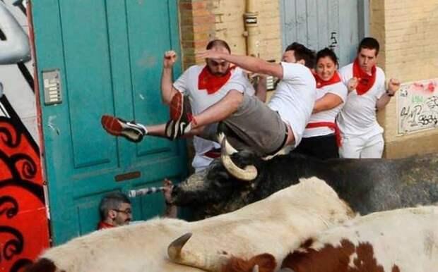 Веселые фото приколы и смешные картинки из сети (11 фото)