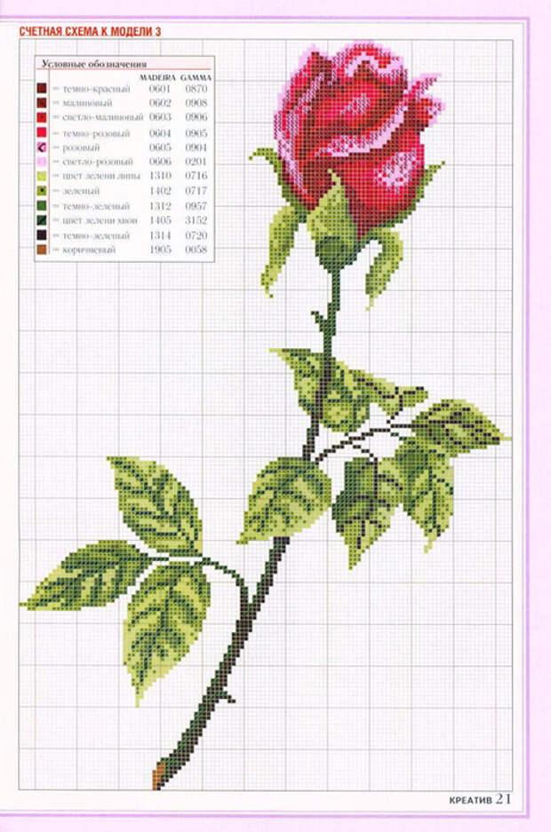 схема-вышивки (15) (463x700, 360Kb)