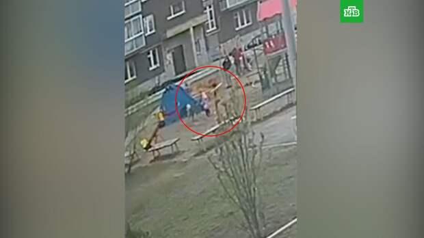 В Пермском крае девушка спасла детей от агрессивной собаки