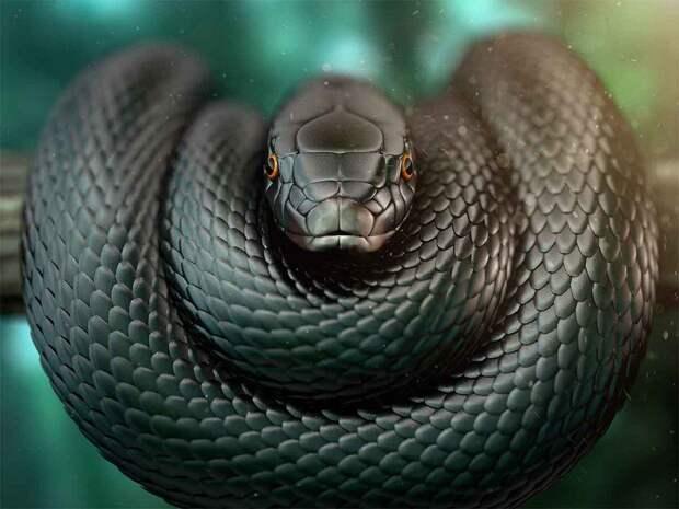 Змеи успешно пережили падение астероида, уничтожившего динозавров
