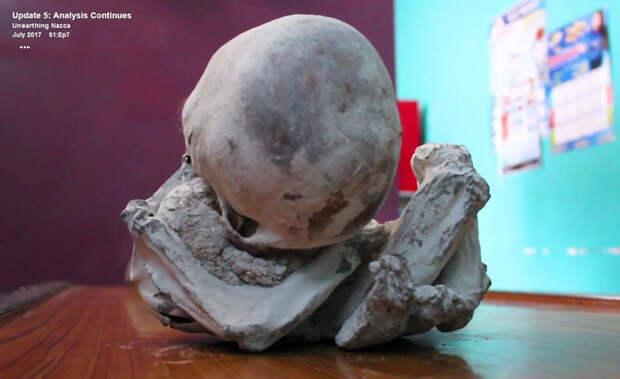 """Ученые изучают пятую из """"инопланетных"""" мумий Наска, скорченную в позе младенца"""
