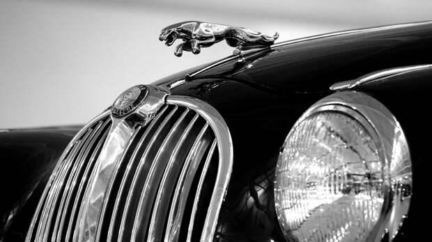В Ялте проходит фестиваль ретро-машин