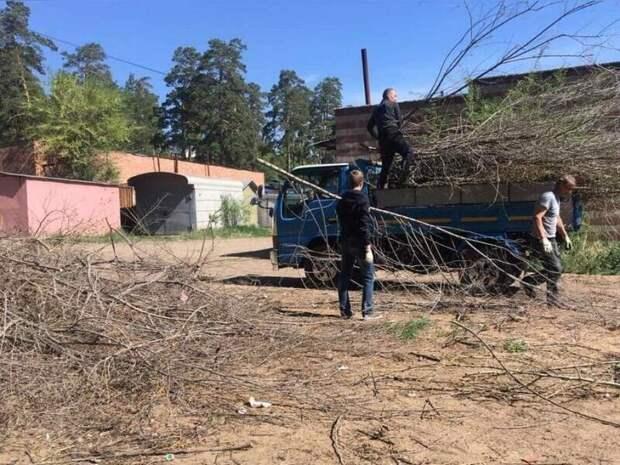 Госинспекция Забайкалья обязала УК вывезти срезанные ветки