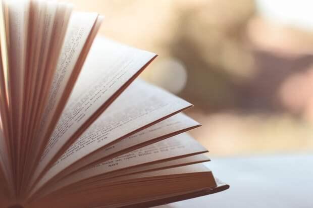 Книги, Страницы, Главы, Открытый, Открытая Книга