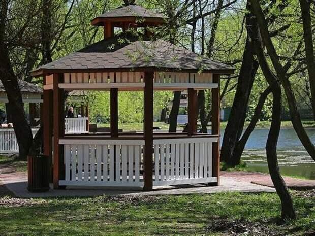 Более 240 площадок для пикников оборудовали на природных территориях Москвы
