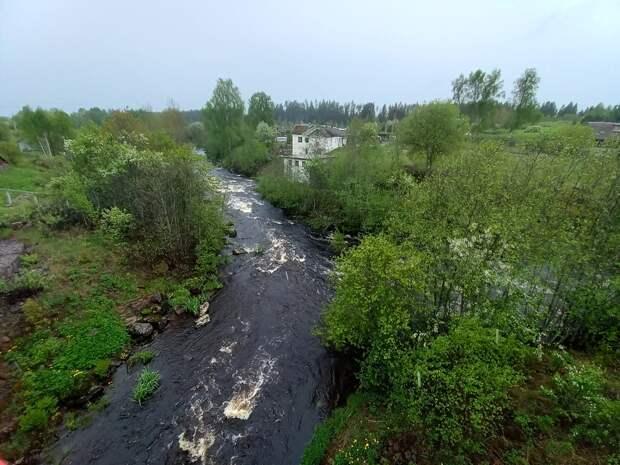 Погранзона за Выборгом. Дикая природа, водопад на реке Бусловке и плотина на реке Селезневке.