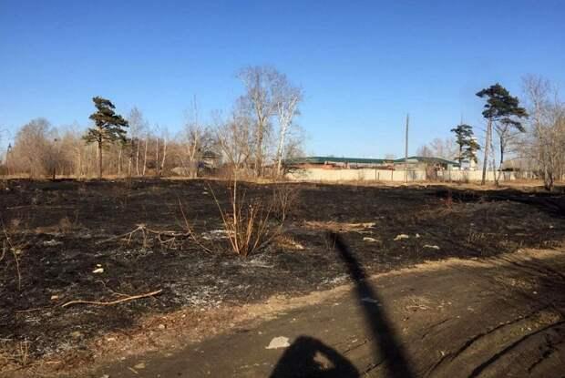 Родители мальчиков 6 и 8 лет ответят за поджог сухой травы в Ангарске