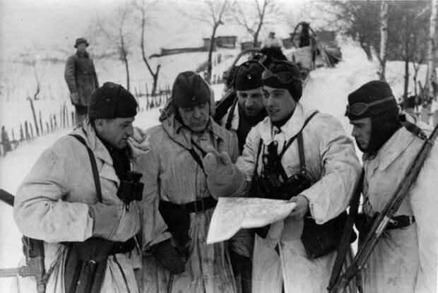 «Истребительные команды»: как действовал спецназ Гитлера против советских партизан