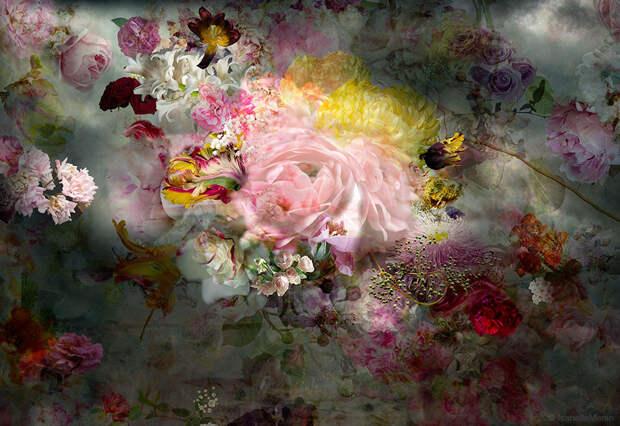 ФОТОСЕССИЯ. Цветы от Isabelle Menin