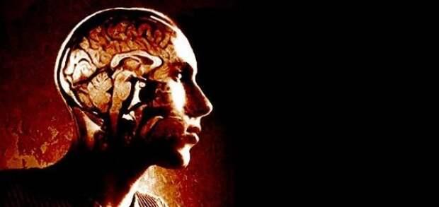Трансплантация головы человека будет реальностью к 2030 году